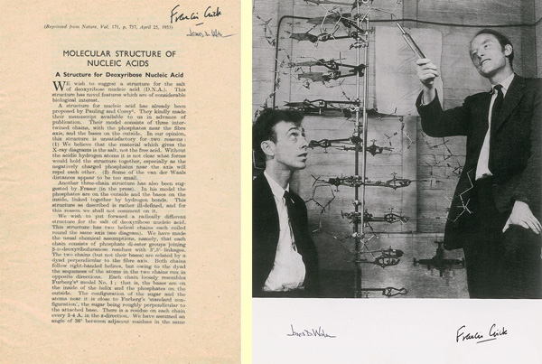 francis crick essay Discovery of the structure of dna on the last day of february in 1953, according to james watson, francis crick announced to the patrons of the eagle pub in cambridge.